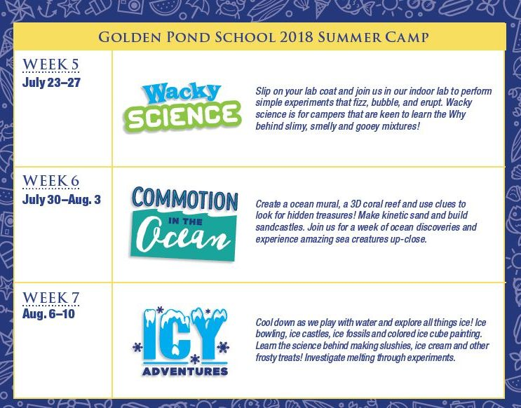 cc1904cc512 5 Great Reasons to Send Your Child to Summer Camp | Golden Pond ...